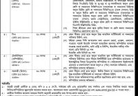 Bangladesh Petroleum Institute Job Circular 2017 www.bpi.gov.bd