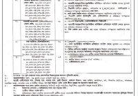 Bangladesh Diesel Plant Limited BDP Job Circular 2019 www.bdp.gov.bd
