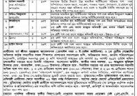 Bangladesh Scouts Job Circular 2017 www.scouts.gov.bd