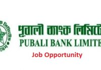 Pubali Bank Limited Job Circular 2019 Bdresultpage